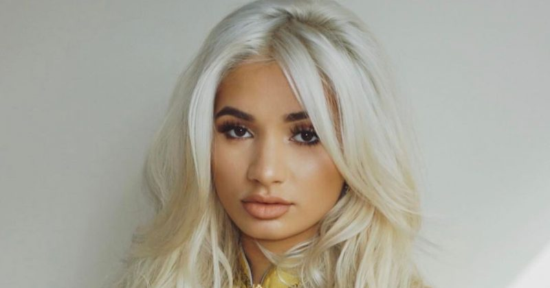 "4 Possible Explanations For Pia Mia's ""I'm A Fan"" - The Native"