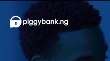 Piggybank.ng raise $1.1 Million in seed funding and announced a new product, Smart Target for group investment - The Native