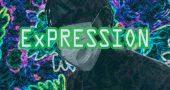 Essentials: Djaji Prime debuts 'ExPRESSION' - The Native