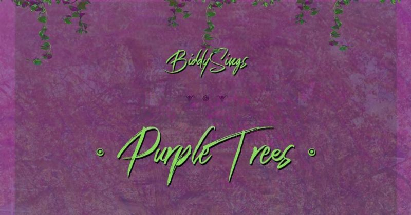 "BiddySings' new single, ""Purple Trees"" celebrates romance-as-addiction - The Native"