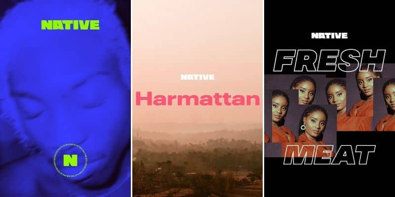 Listen to NATIVE-curated playlists on your favourite streaming services